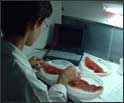 Análisis sensorial del jamón