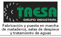 Taesa